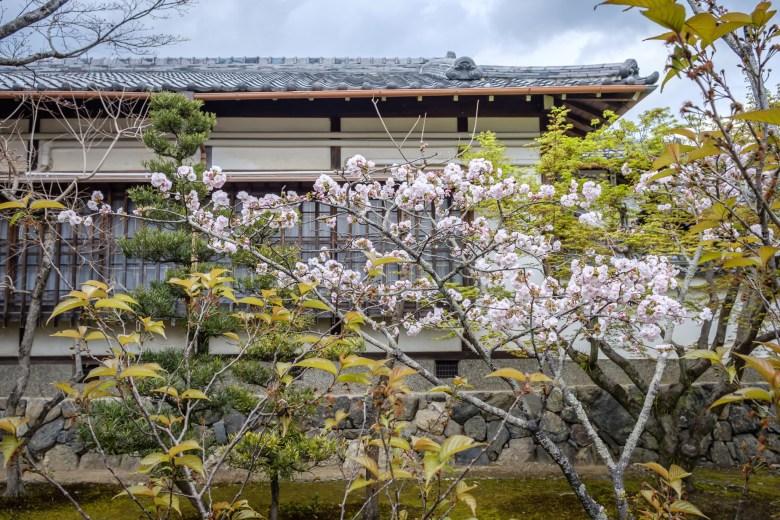 Japan Kyoto 097