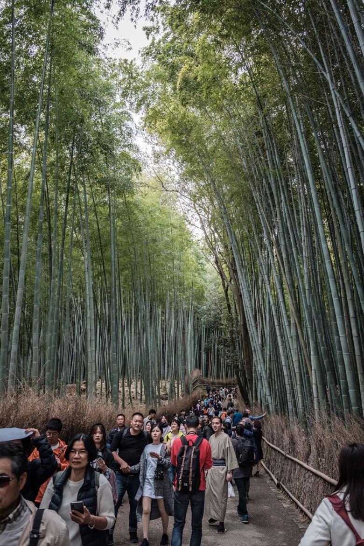 Japan Kyoto 102