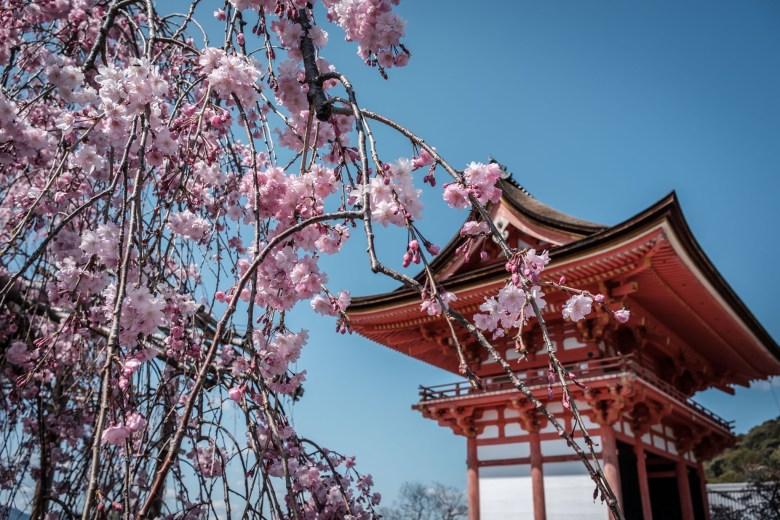 Japan Kyoto 153