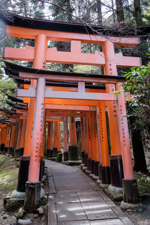 Japan Kyoto 197