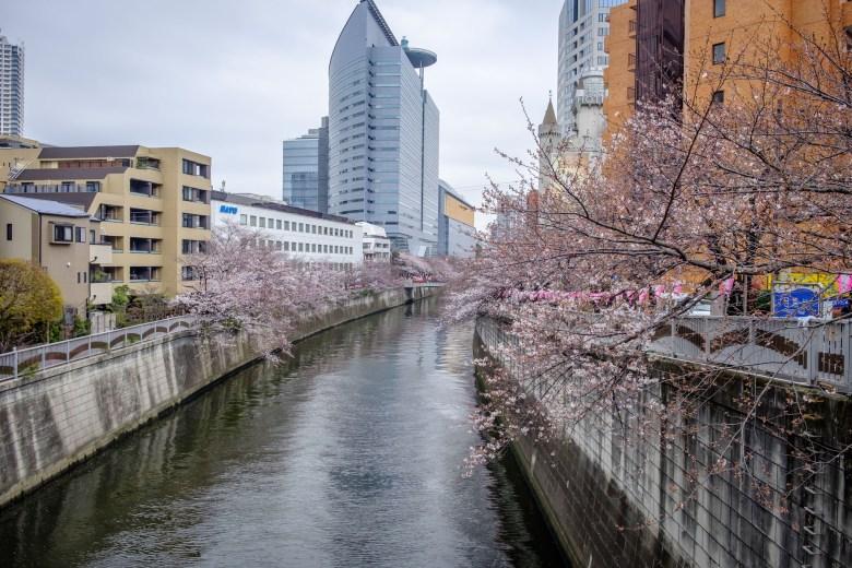 Japan Tokyo 002