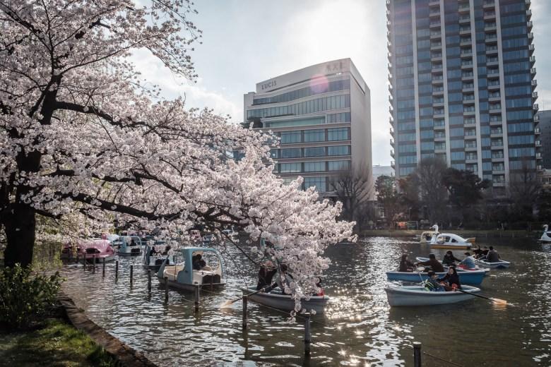 Japan Tokyo 035