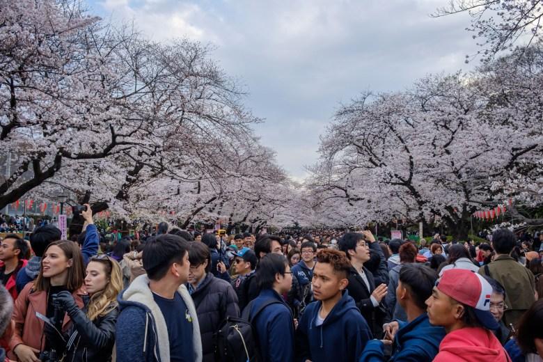 Japan Tokyo 047