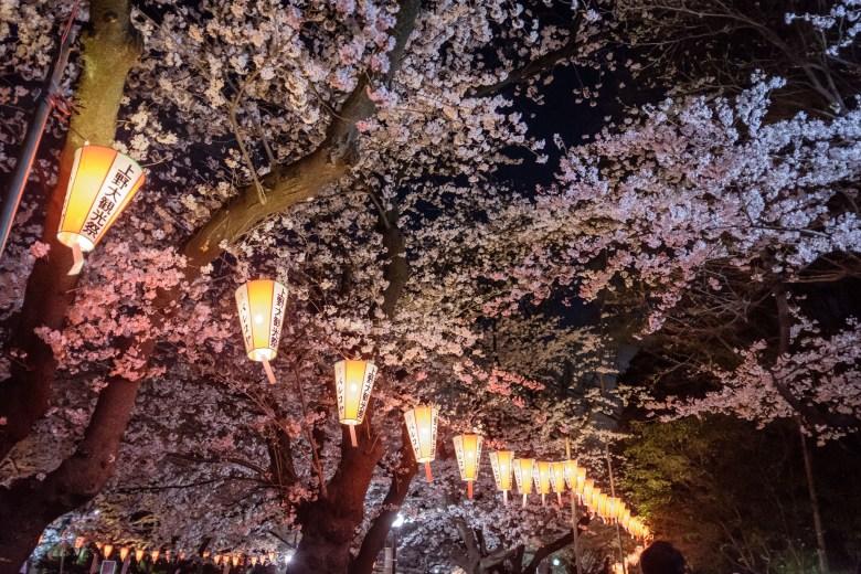 Japan Tokyo 058