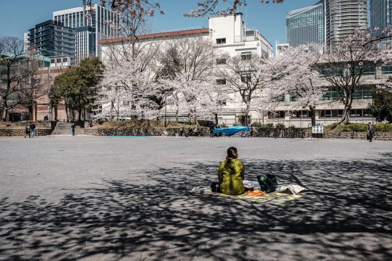 Japan Tokyo 169