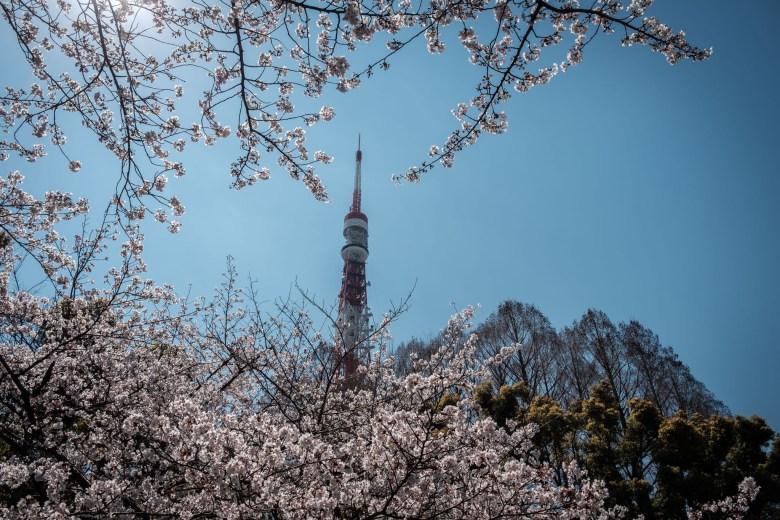 Japan Tokyo 170