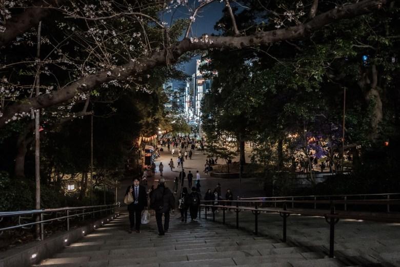 Japan Tokyo 261