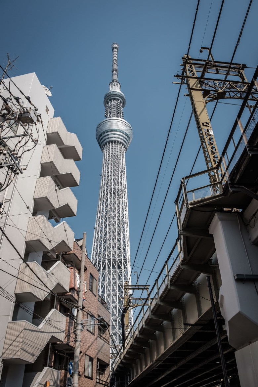 Japan Tokyo 314