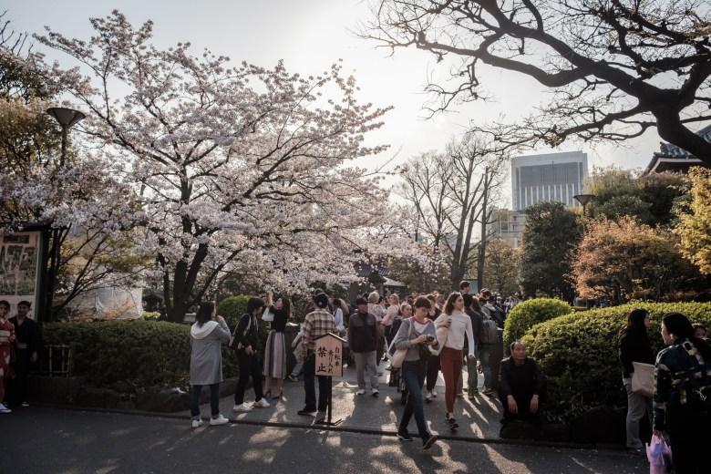 Japan Tokyo 352