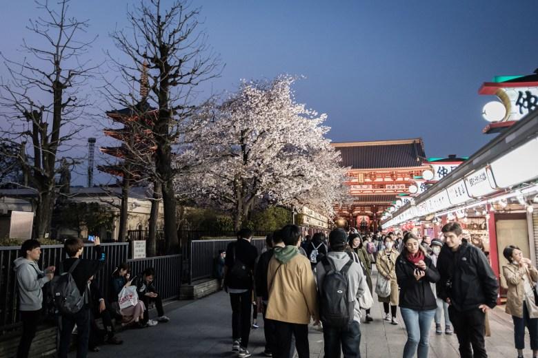 Japan Tokyo 365