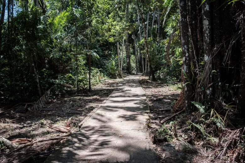 Malaysia Bako National Park 015