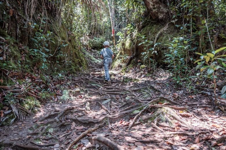 Malaysia Bako National Park 019