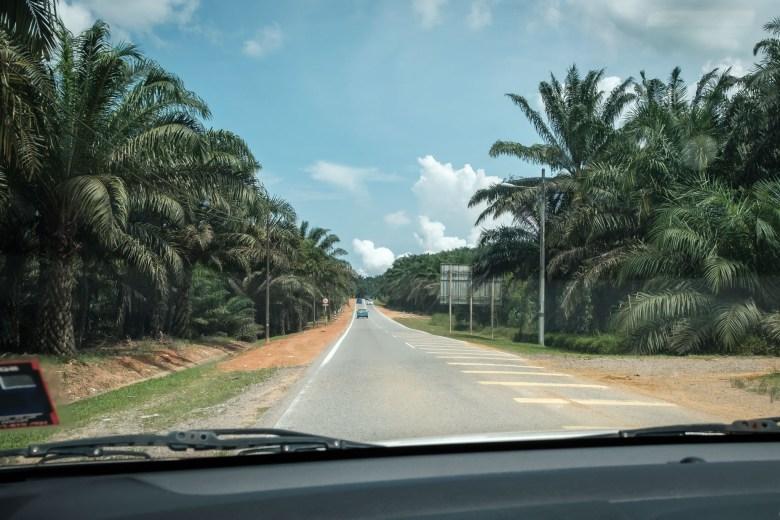 Malaysia Desaru 36