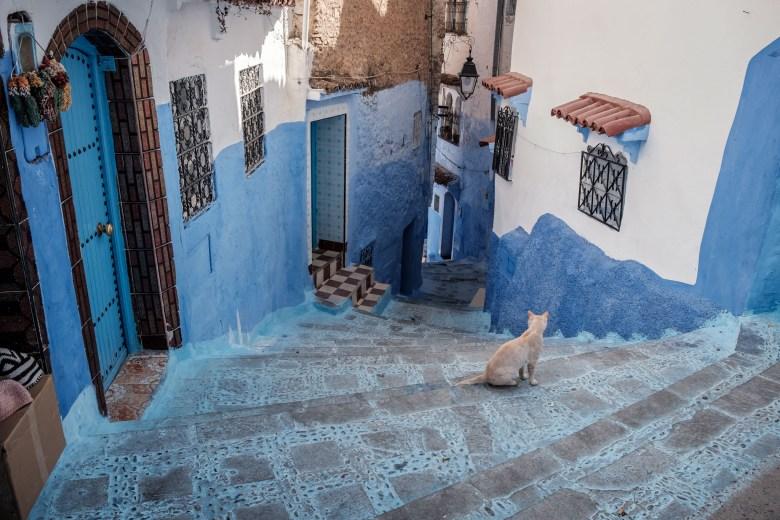 Morocco Chefchaouen 33