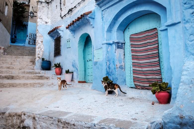Morocco Chefchaouen 93