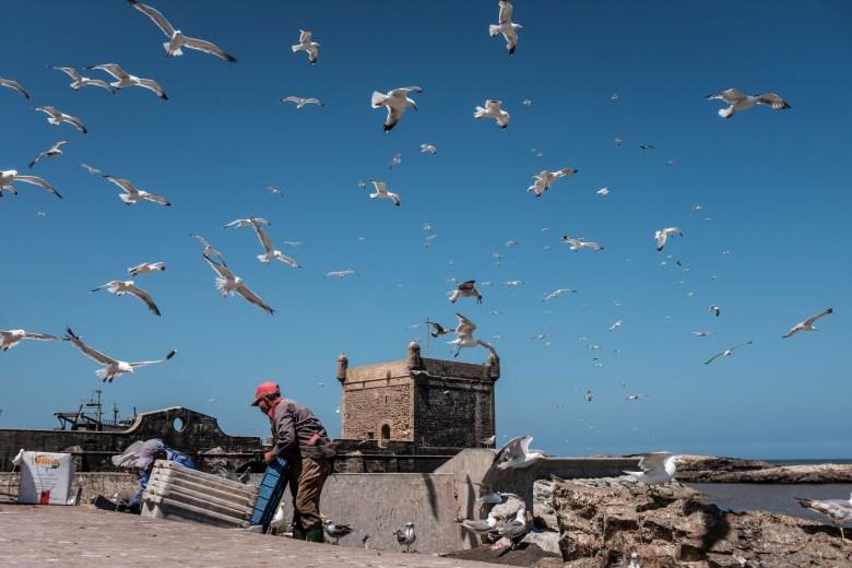 Morocco Essaouira 07