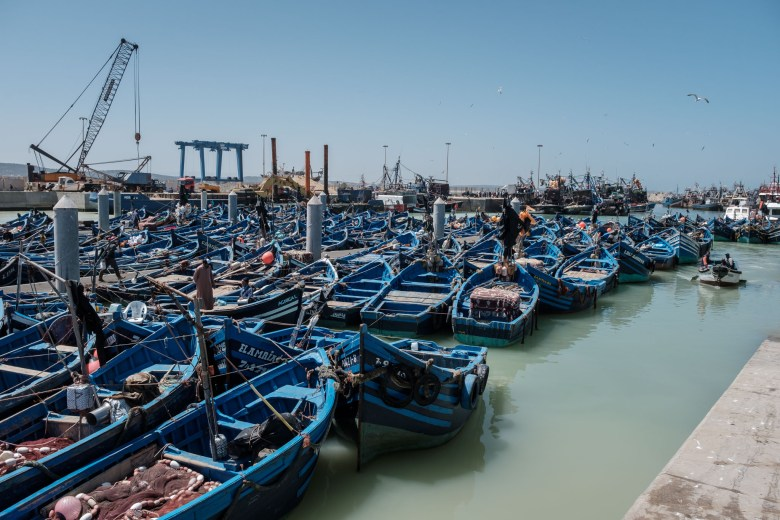 Morocco Essaouira 14