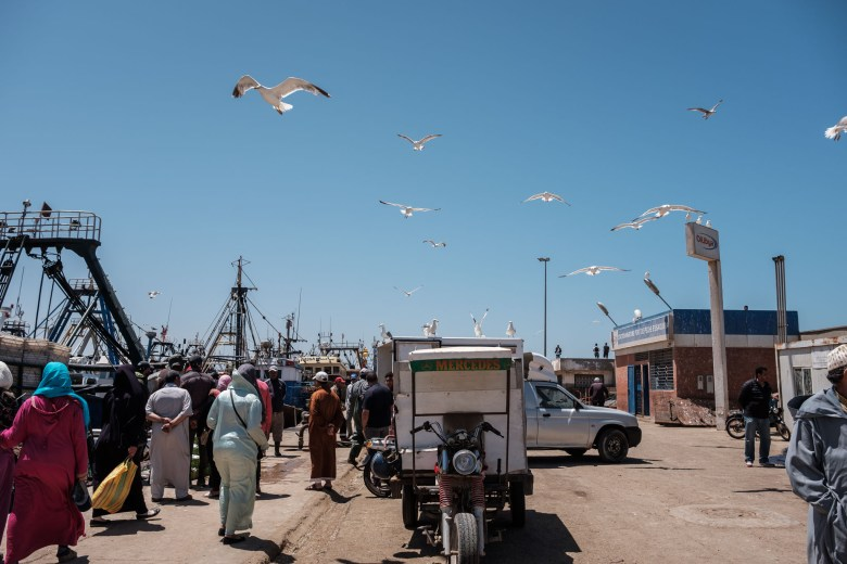 Morocco Essaouira 24