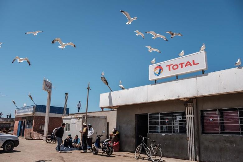 Morocco Essaouira 25