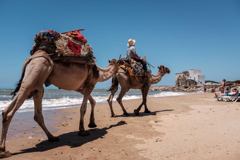 Morocco Essaouira 72