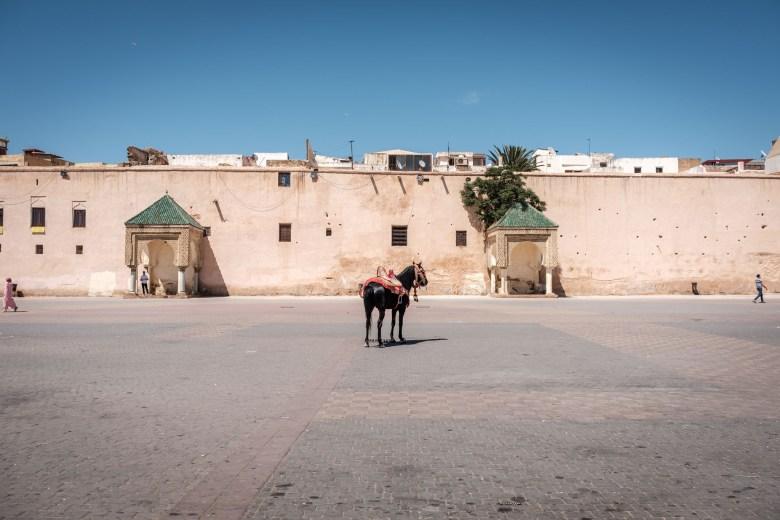 Morocco Meknes 26