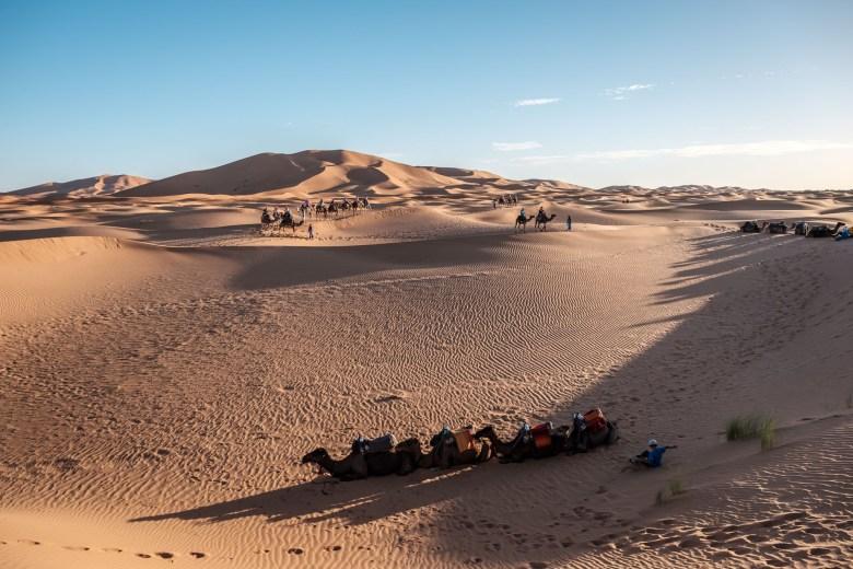Morocco Merzouga 086