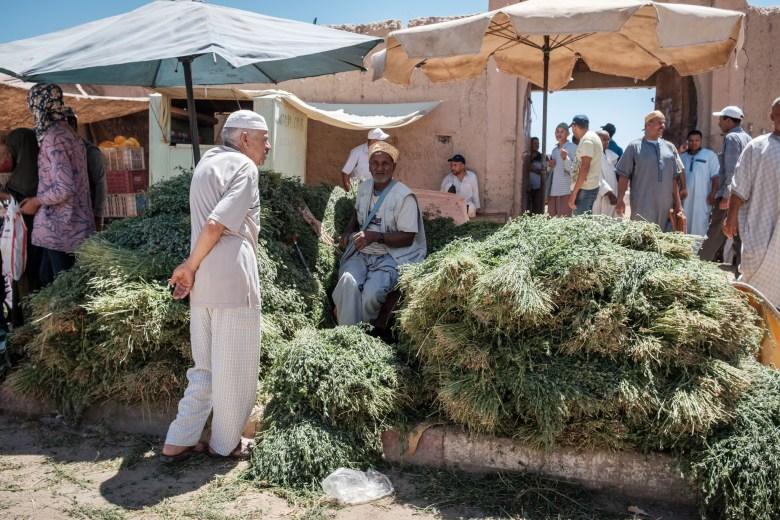 Morocco Rissani 03
