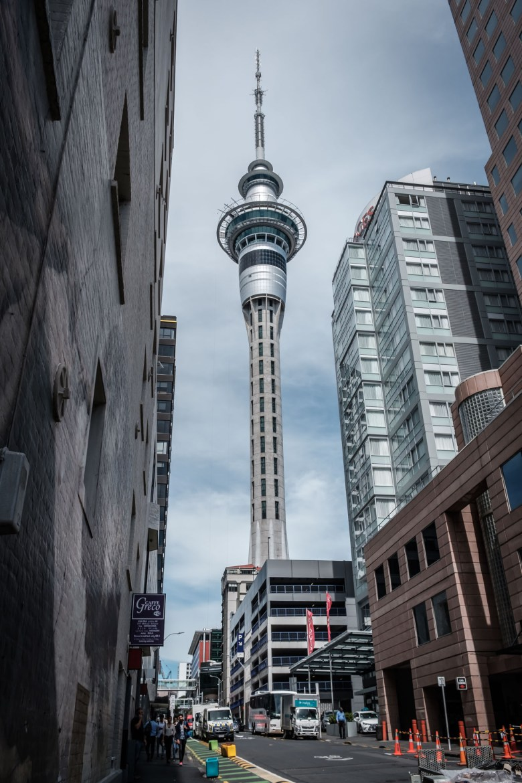 New Zealand Auckland 11