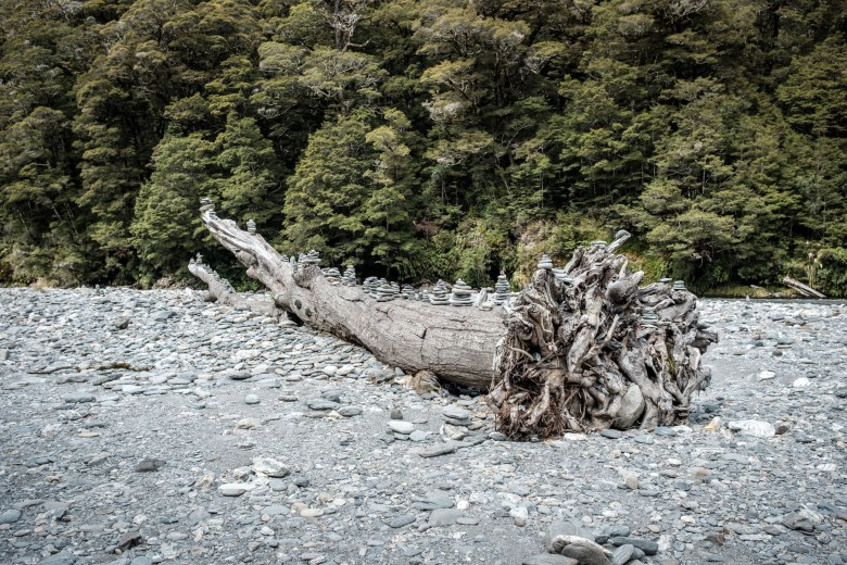 New Zealand Bruce Bay 05
