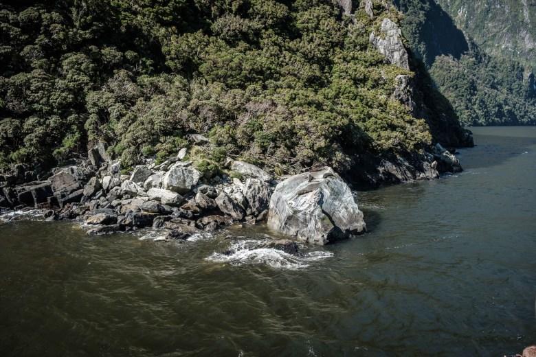 New Zealand Milford Sound 44