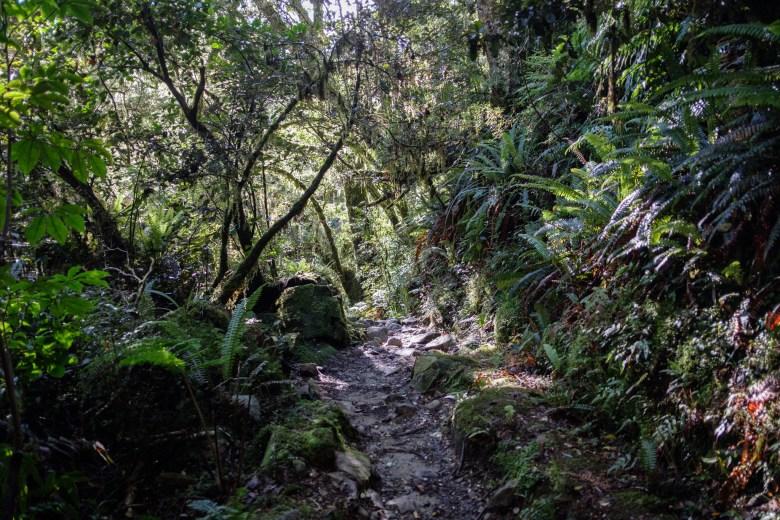 New Zealand Queenstown 039