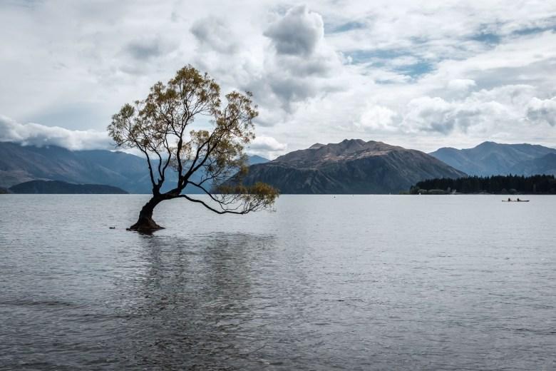New Zealand Wanaka 3