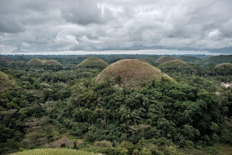 Philippines Bohol 72