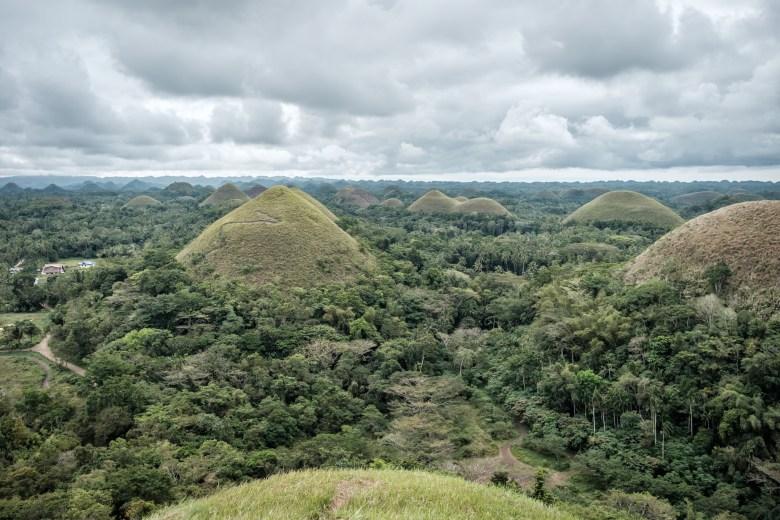 Philippines Bohol 73