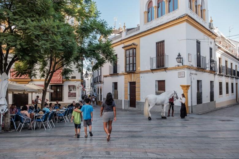 Spain Cordova 06