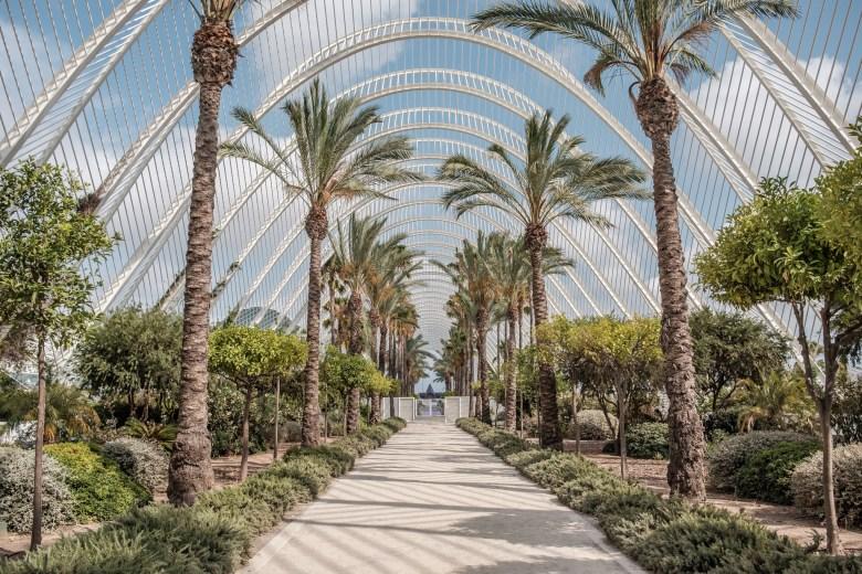 Spain Valencia 15
