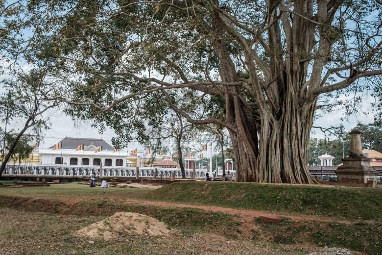 Sri Lanka Anuradhapura 10