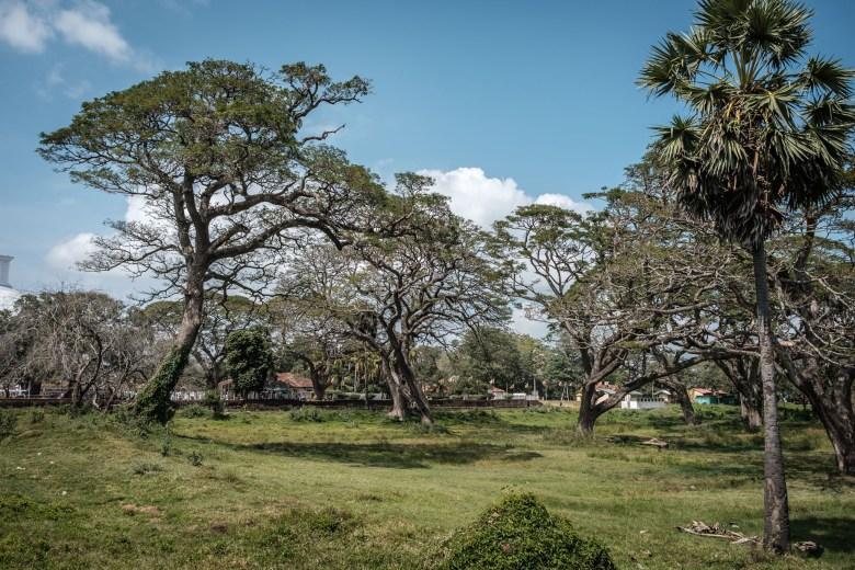 Sri Lanka Anuradhapura 14
