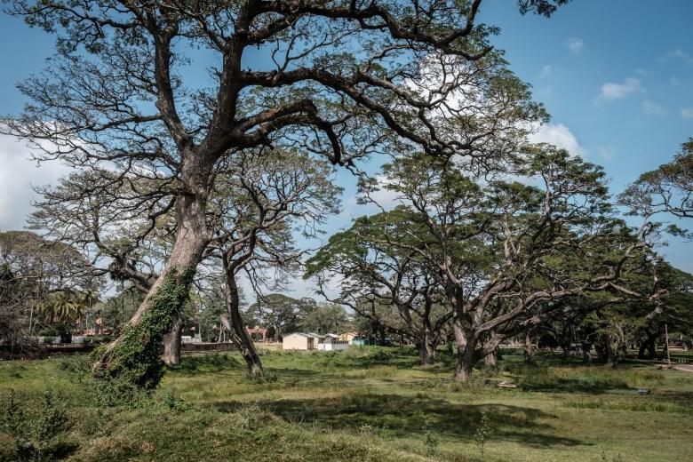Sri Lanka Anuradhapura 16