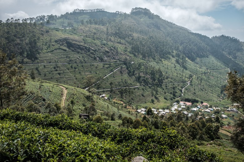 Sri Lanka Ella 52