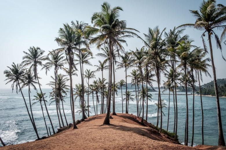 Sri Lanka Mirissa 38