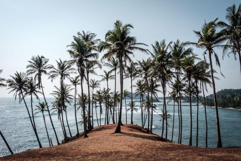 Sri Lanka Mirissa 40