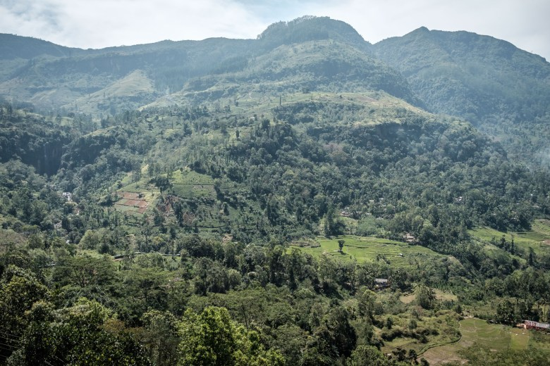 Sri Lanka Nuwara Eliya 18