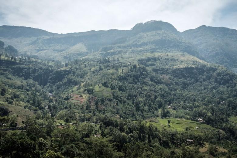 Sri Lanka Nuwara Eliya 26