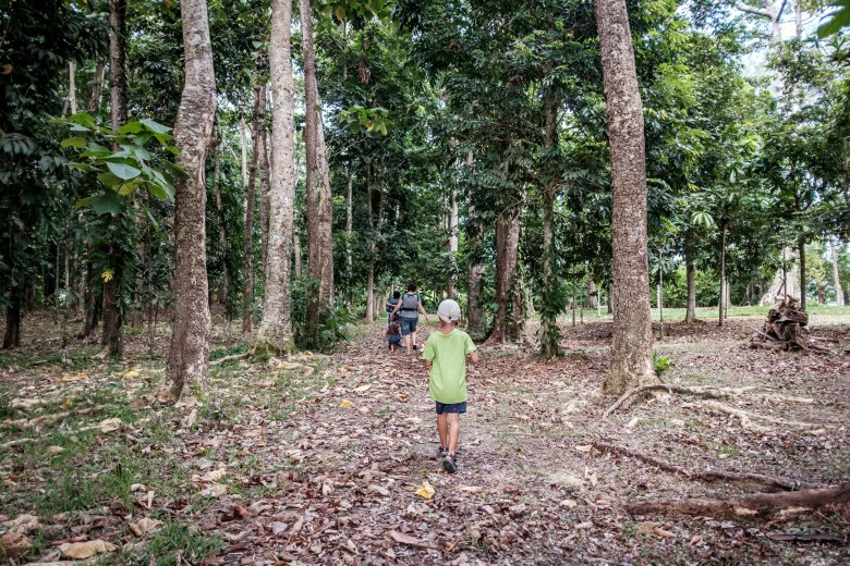 Vanuatu Efate 040