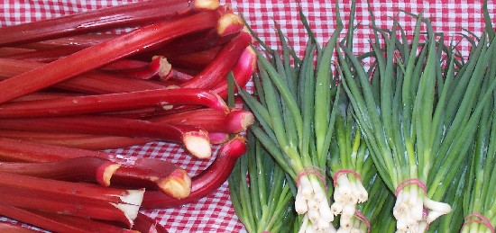inexpensive organic food