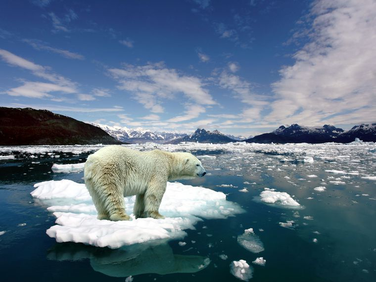 climate-change-and-antarctica