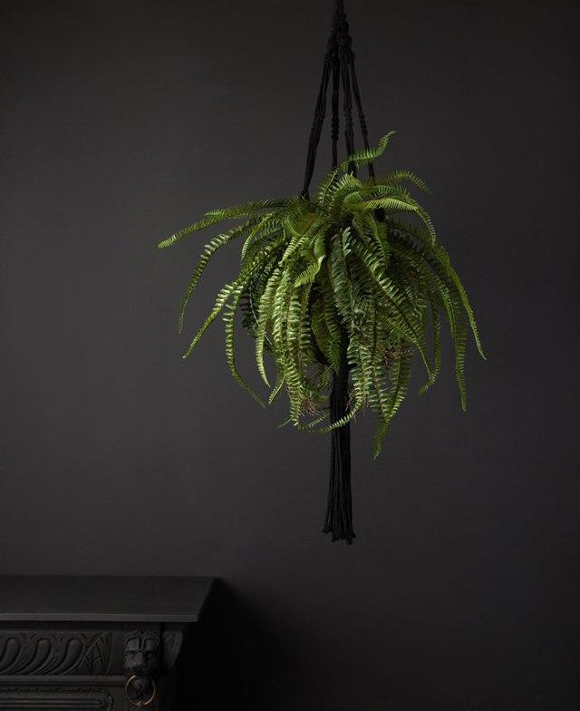 Biophilic faux plants.