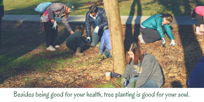 besides-being-good-for-your-health-tree-planting-is-good-for-your-soul