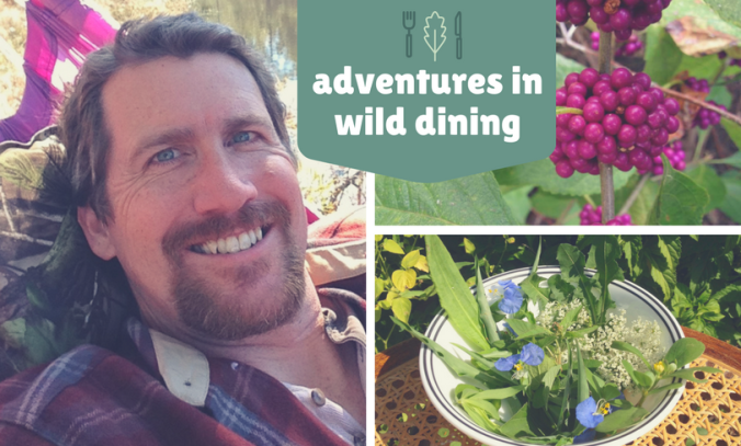 adventures-in-wild-dining-1